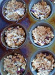 muffin gems 005