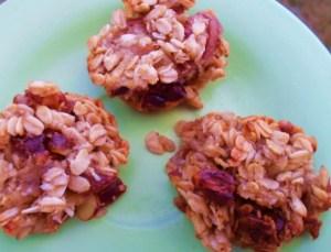muffin gems 008