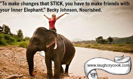 elephant meme